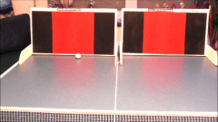 TOPSPIN TRAINER DUO